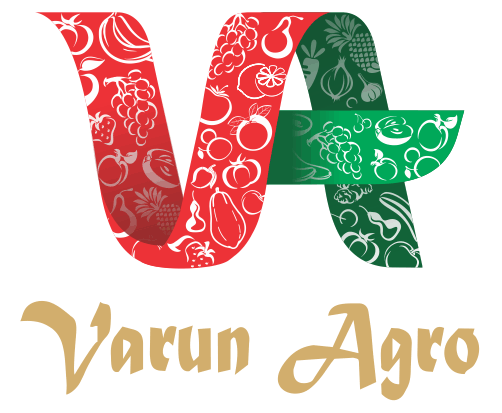 Varun Agro Processing Foods Pvt Ltd