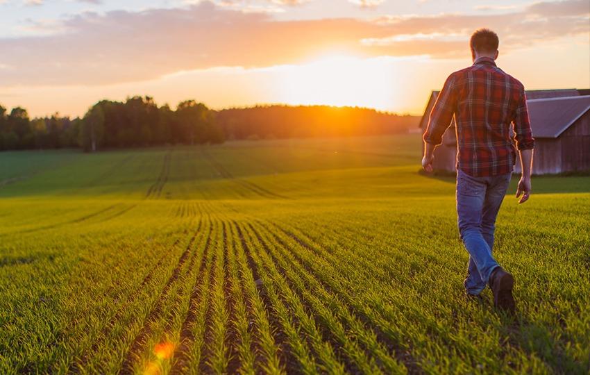 Agriculture Success
